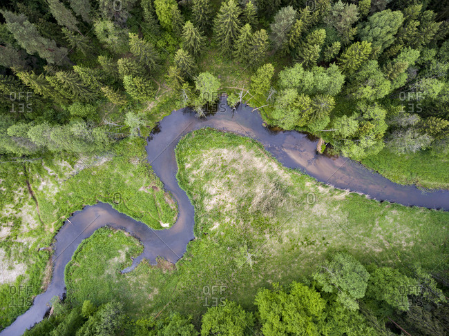 Winding river and green forest in late spring
