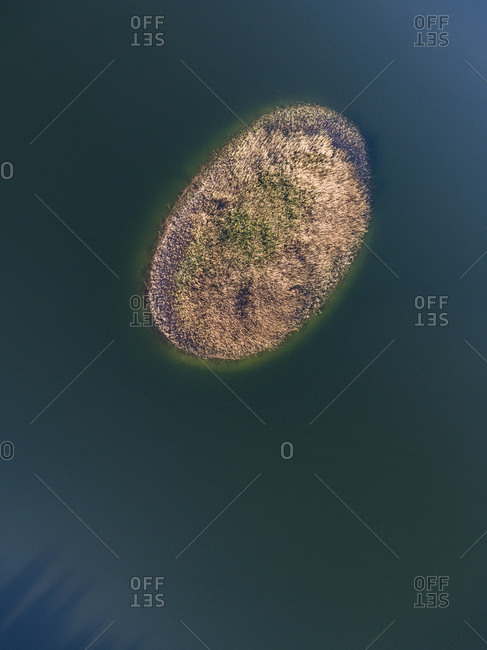 Oval shaped island in a lake in late spring