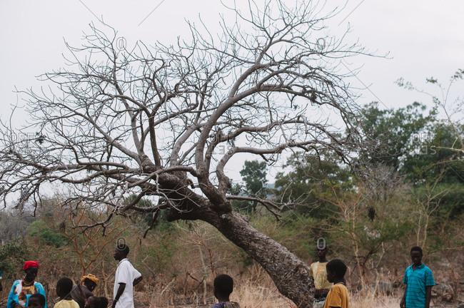 Niokolo Koba National Park, Senegal - November 30, 2017: Group of black people gathering in rural place on nature of desert