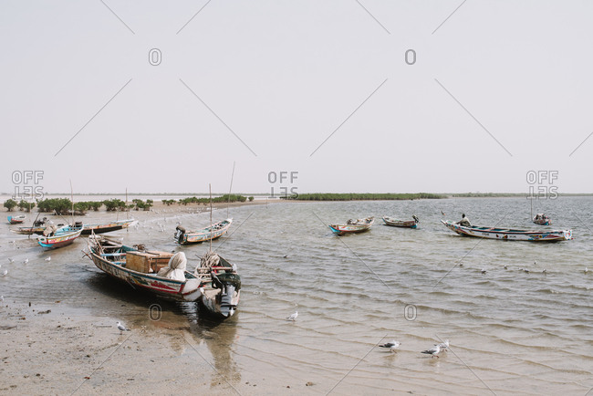 Dakar, Senegal - November 30, 2017: Landscape of seagulls walking among shabby boats on shore of river