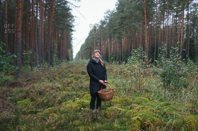 Woman collecting mushrooms in woods
