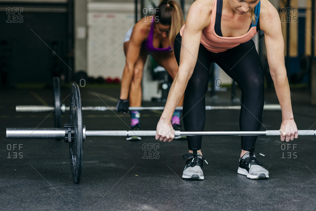 Sportive women working out in gym lifting barbells with weights