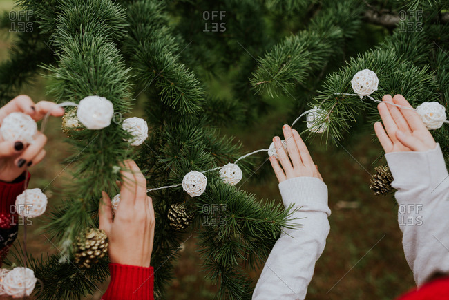 Crop women decorating conifer