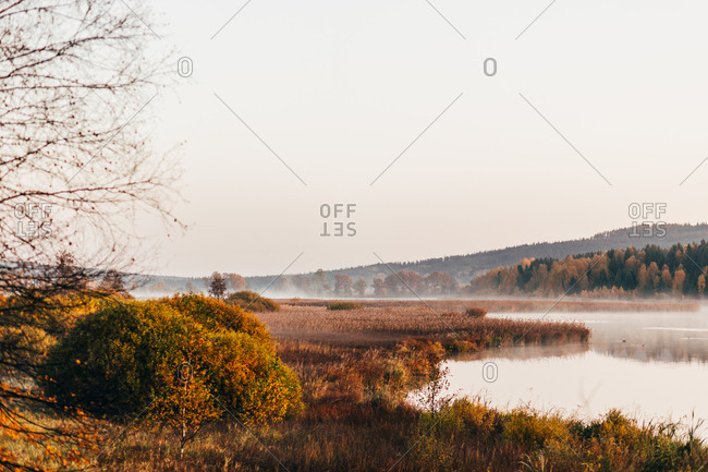 Picturesque landscape of autumnal colorful vegetation on shores of lake in morning haze