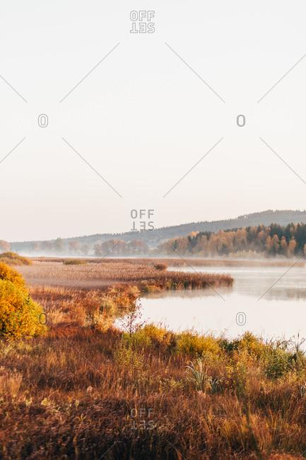 Morning fog drifting over lake