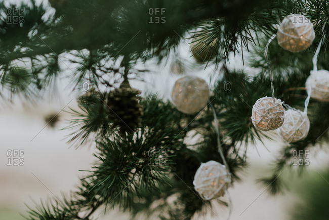 Close-up shot of cute decorations hanging on branches of conifer