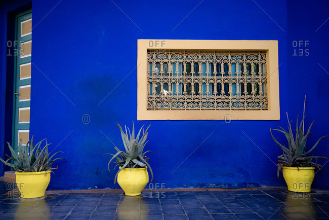 Plants beside blue exterior of Jardin Majorelle in Marrakech