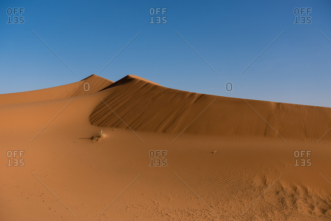 Saharan Erg Chebbi under blue skies in Merzouga, Morocco