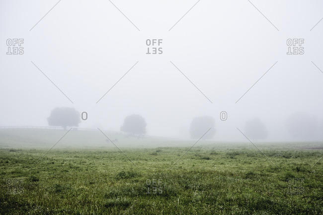 Foggy farmland, Hamptonburgh, New York