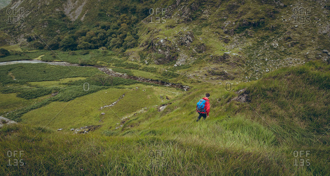 Male Hiker walking on the green countryside landscape