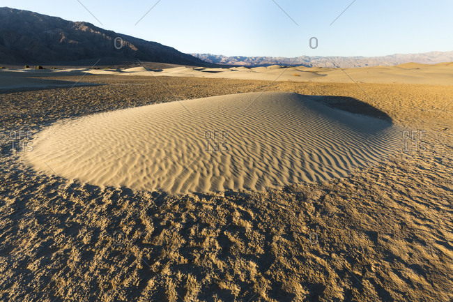 Morning light shines on a newly formed sand dune in the Mesquite Dunes in Death Valley National Park