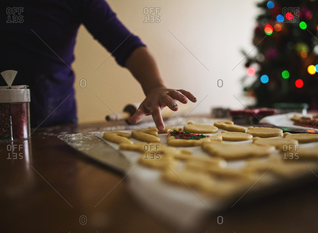 Girl putting sprinkles on Christmas cut-out sugar cookies