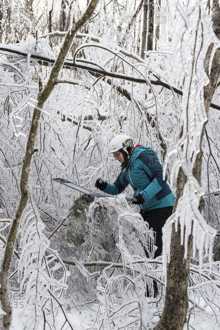 Thorton, NH, USA - January 29, 2016: A team of researchers replicating an ice storm during winter in the White Mountains of New Hampshire. The team is studying the effects of ice storms on soil, trees, birds and insects.
