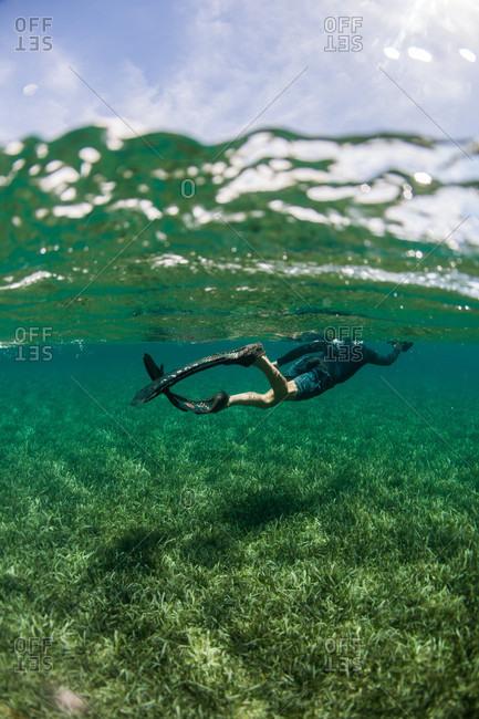 West End, West Bay, Roatan, Honduras - May 30, 2013: Snorkeler swimming over turtle grass underwater off coast of Roatan Island reef