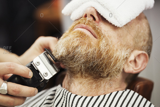A customer sitting in the barber's chair, with a hot towel on his face, and a barber trimming his beard with an electric trimmer.