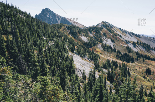 Autumn in the North Cascades, near Harts Pass, Pacific Crest Trail, Pasayten Wilderness, Washington.