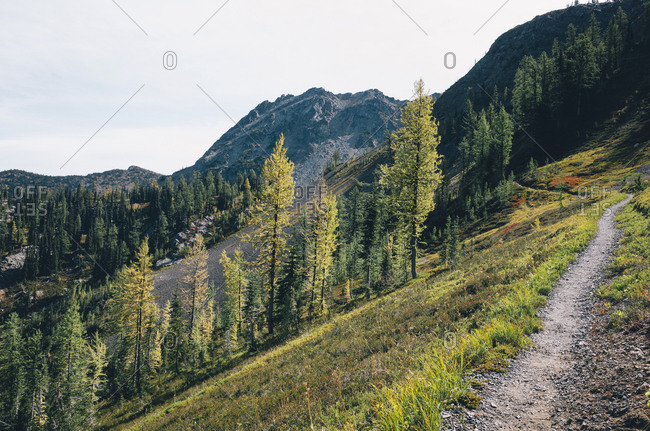 Hiking trail in the North Cascades, Pacific Crest Trail through pristine alpine wilderness, autumn, near Granite Pass, Pasayten Wilderness, Okanogan National Forest, Washington.