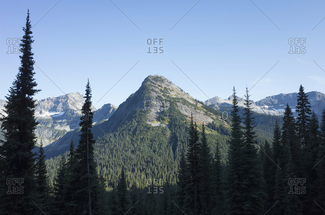 Mountains and alpine forest in foreground, along the Pacific Crest Trail, near Rainy Pass, North Cascades National Park, Washington.