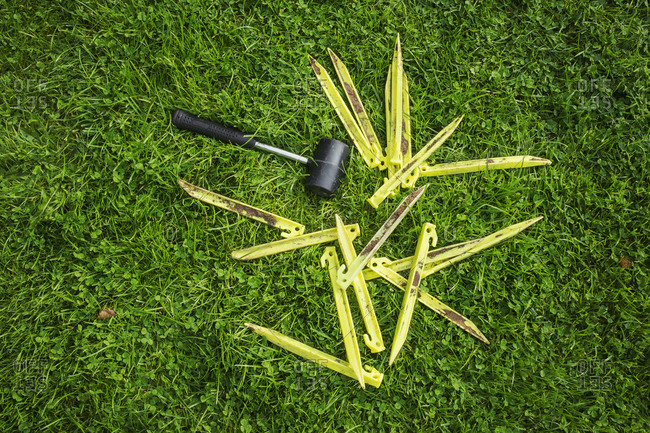 A mallet and yellow plastic pegs, tent pegs on the grass, camping equipment.