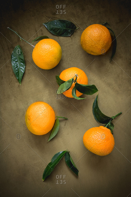 Oranges and leaves
