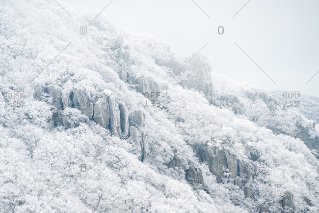 Snow covered trees and rock formations on the slopes of Hallasan on Jeju Island