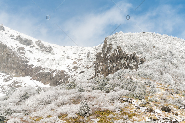 Rocky outcrop on the slopes of Hallasan on Jeju Island