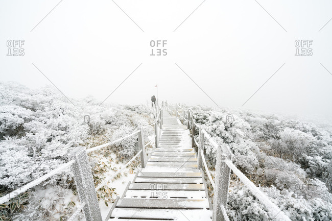 Snow covered stairs on the slopes of Hallasan on Jeju Island
