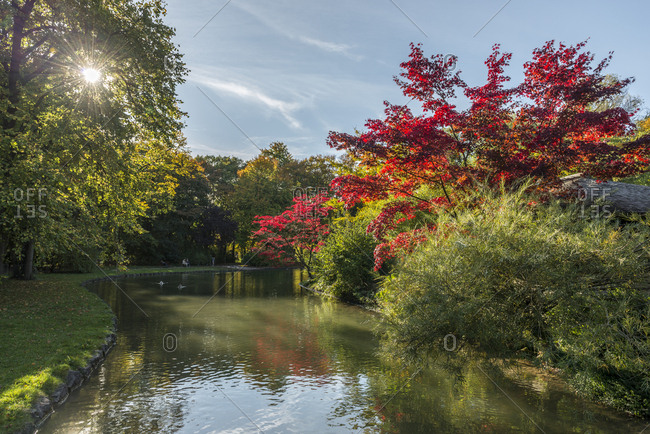 Germany- Bavaria- Munich- English Garden in autumn