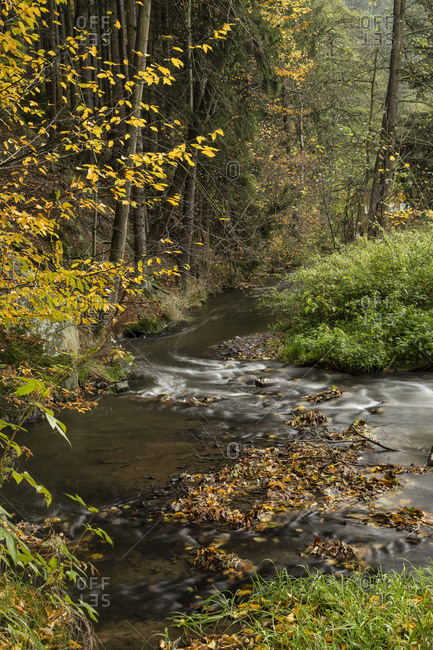 Germany- Thuringia- Ziegenrueck- mountain stream in autumn