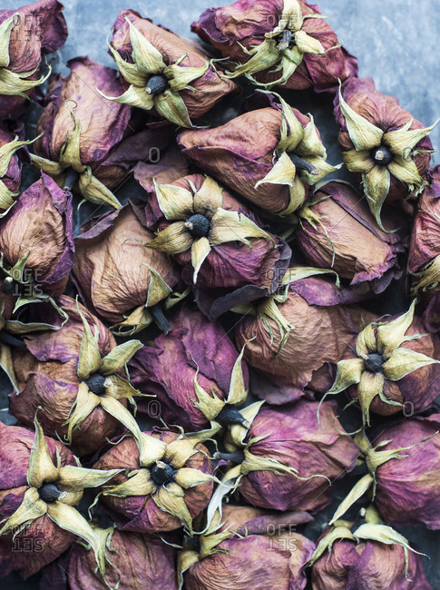 Dried rose heads arranged on a table