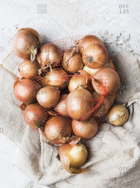 Onions in net bag