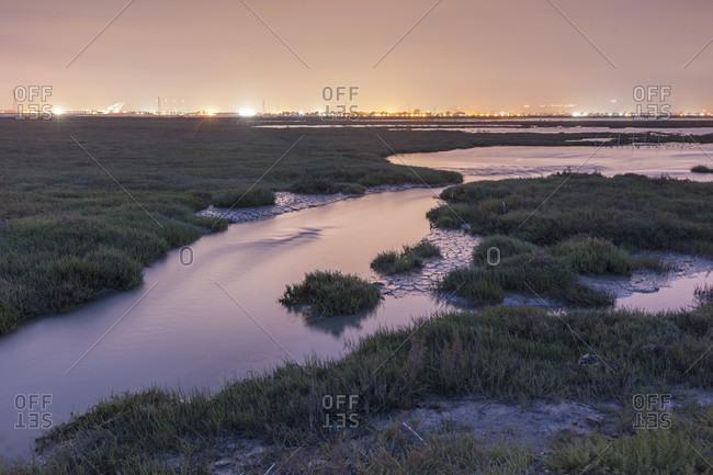 Restored Marsh, Former Salt Pond with city in background, Eden Landing, Hayward, California, USA