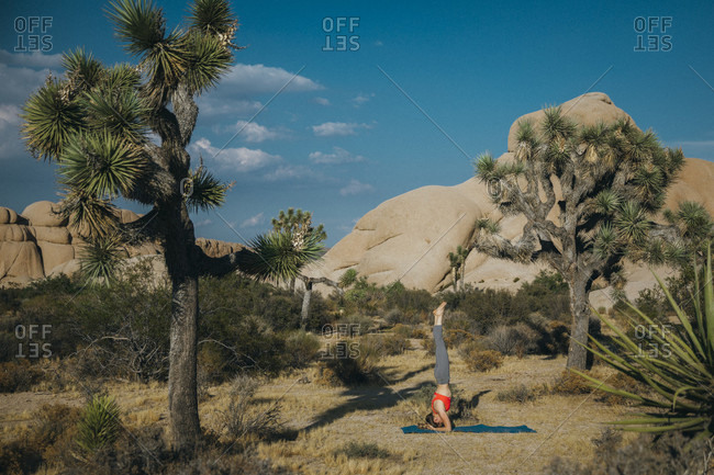 A young woman in headstand pose, Joshua Tree National Park