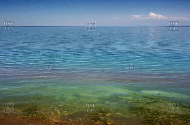 Lake with algae floating