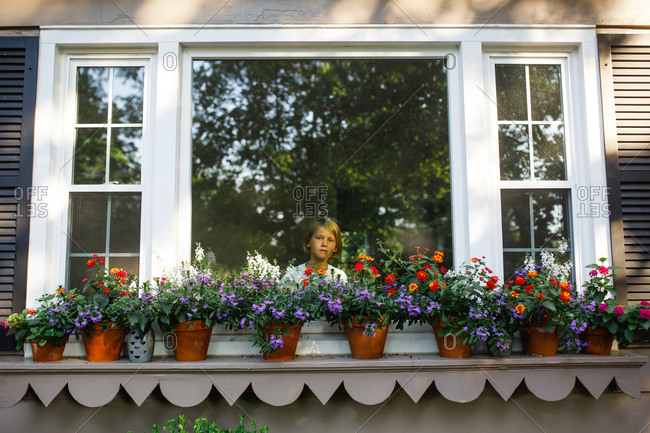 Young girl looks out of a window lined with flower pots