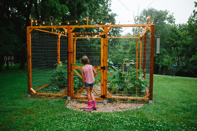 Young girl looks into a vegetable cage standing in a landscaped garden