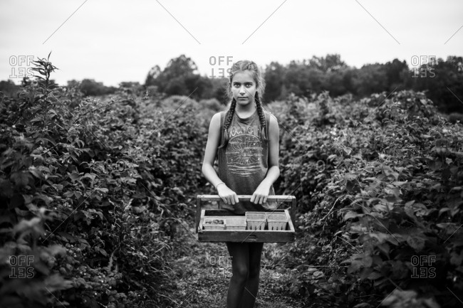 Teenage girl stands holding a picking tray among bushes