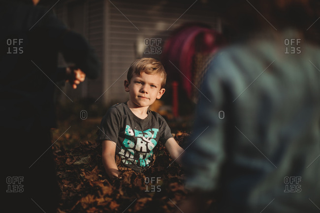 Boy sitting in pile of leaves