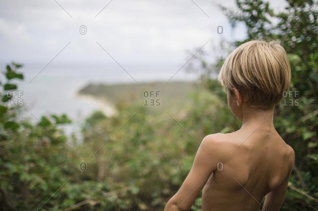 Rear view of boy in wilderness