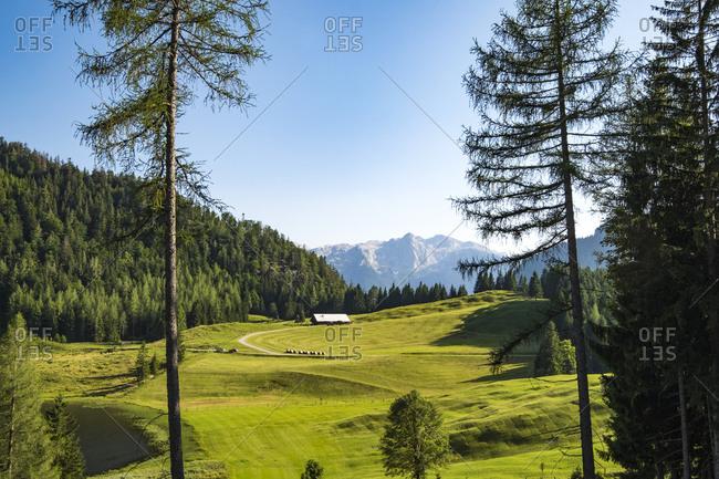Scenic Alps countryside
