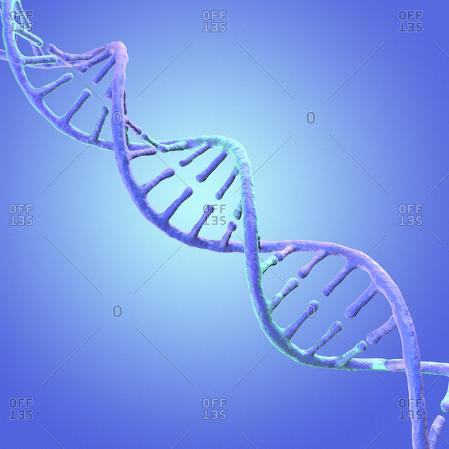 DNA strand, illustration