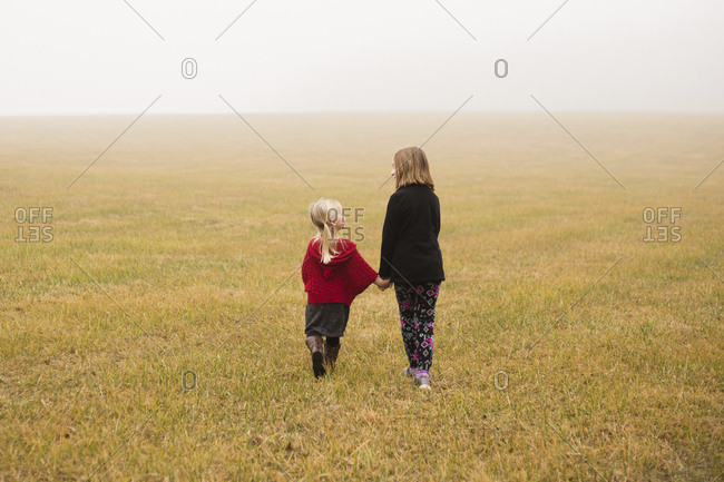 Rear view of siblings walking on field during foggy weather