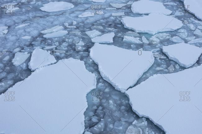 Sea ice creates texture on the water's surface