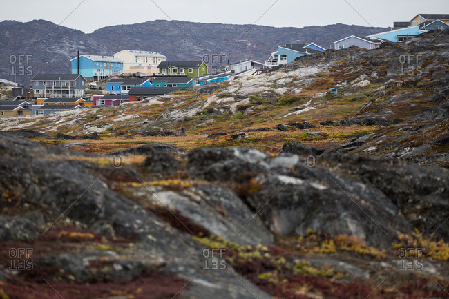 Tundra ecosystem surrounding Ilulissat, Greenland