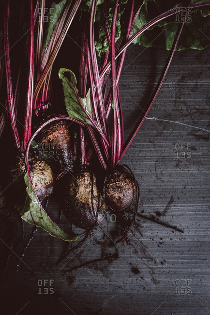 Fresh picked beets