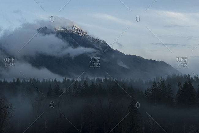 Forest against mountains during foggy weather at North Cascades National Park
