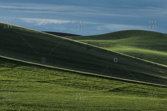 Scenic view of Palouse Hills against sky