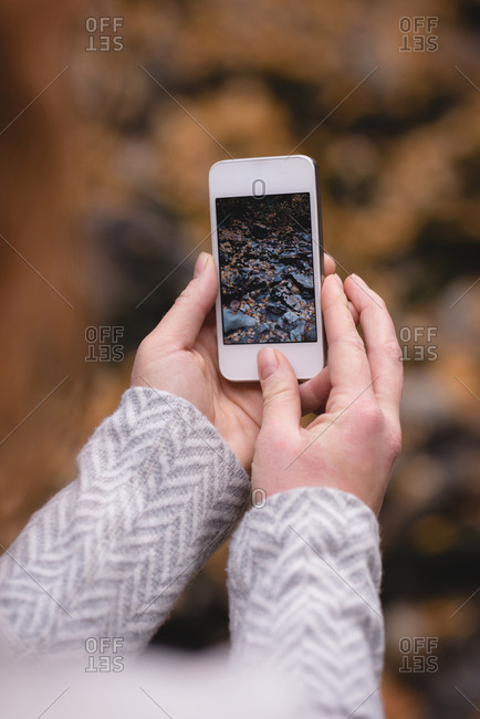 Close-up of woman looking at the autumn photograph in her mobile phone