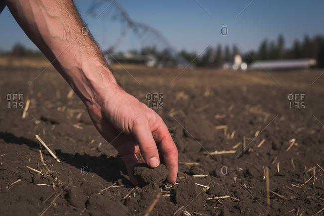 Farmer checking fertile soil in the field