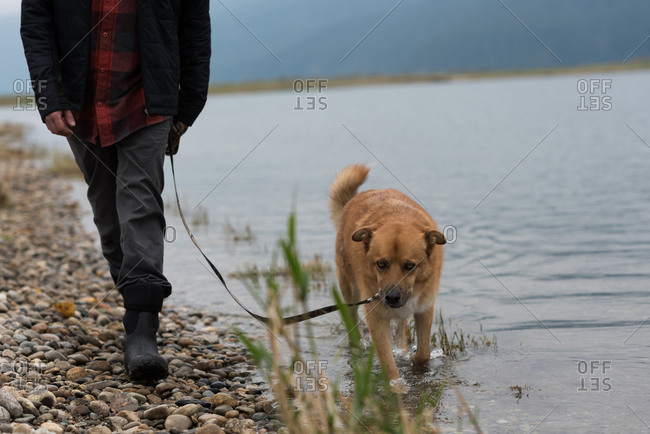 Low section of man and his pet dog walking at river bank